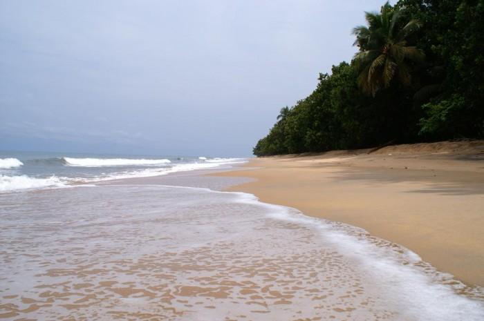 Zatoka Gwinejska