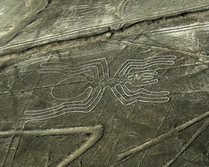 Linie na płask.Nazca - Spider_pająk