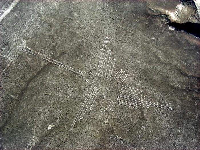 Linie na płask.Nazca - Hummingbird