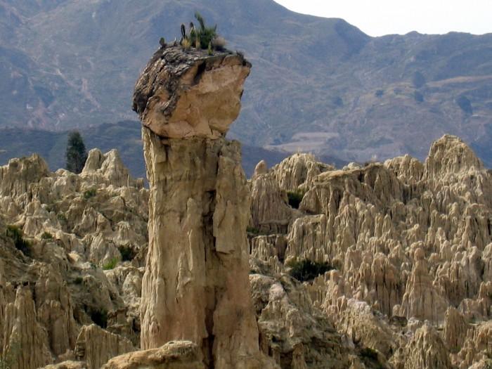 Rzeźby Natury