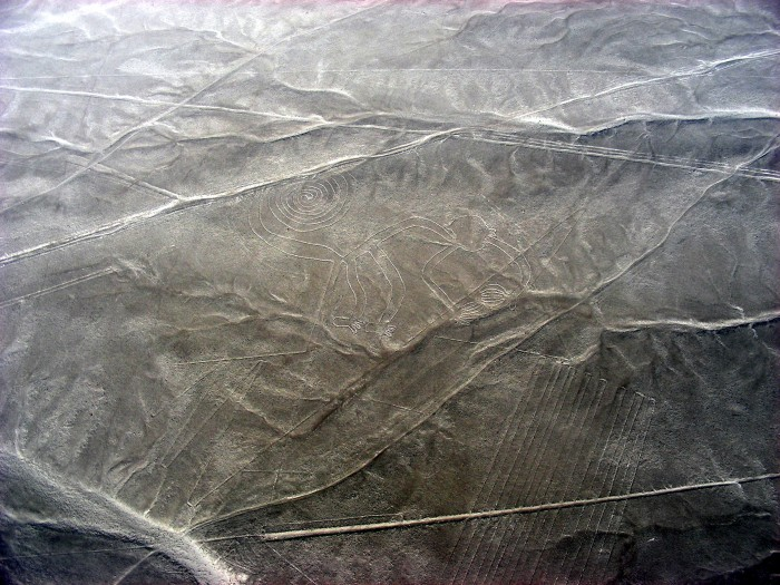 Linie na płask.Nazca - Monkey_małpa