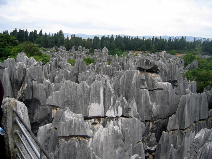 Kamienny Las