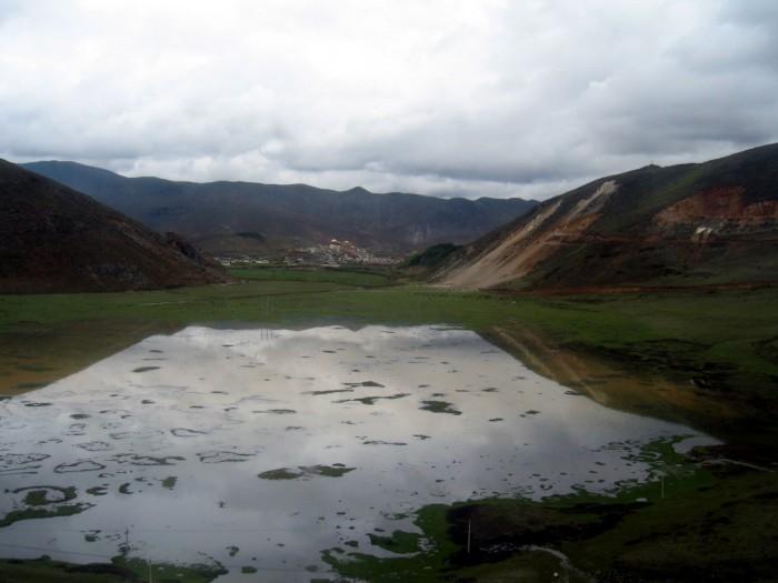 Jezioro Napa - obecnie pastwiska