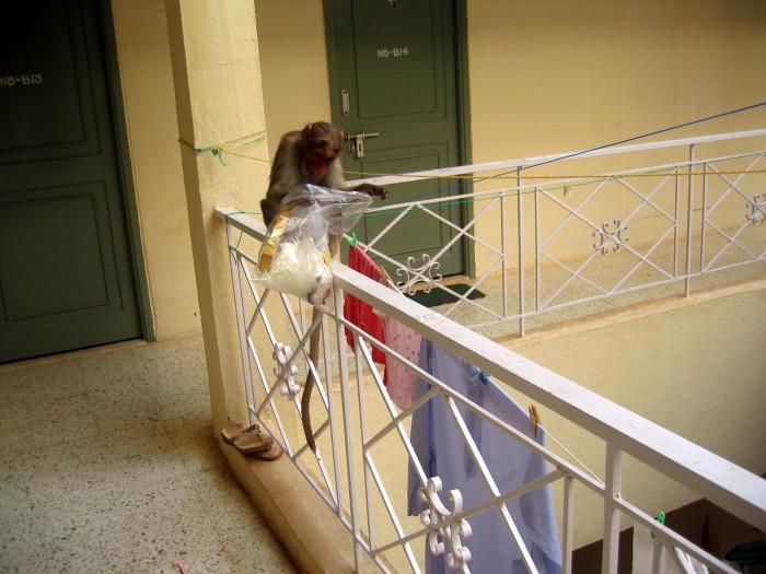 Napad rabunkowy w hotelu